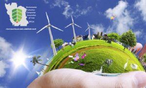محیط زیست چیست